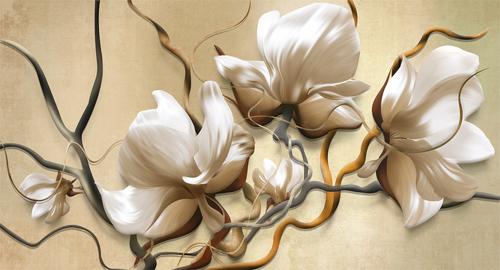 Цветы магнолии #9